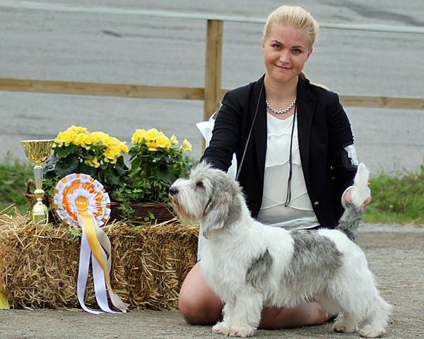 Ricky BEST IN SHOW 3