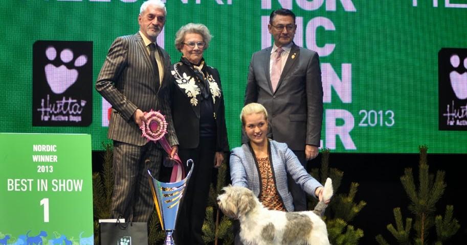 BEST IN SHOW NORDIC WINNER 2013